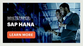 Whitepaper: SAP HANA